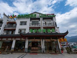 GreenTree Alliance Hotel Chizhou Jiuhuashan Shengxiang Jingqu Branch