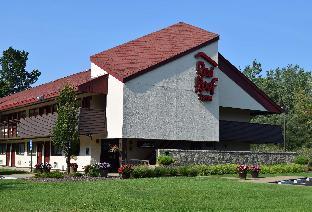 Get Promos Red Roof Inn Buffalo - Niagara Airport
