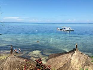 Dive Point Alcoy Resort Cebu - View of the House Reef from the Dive Center