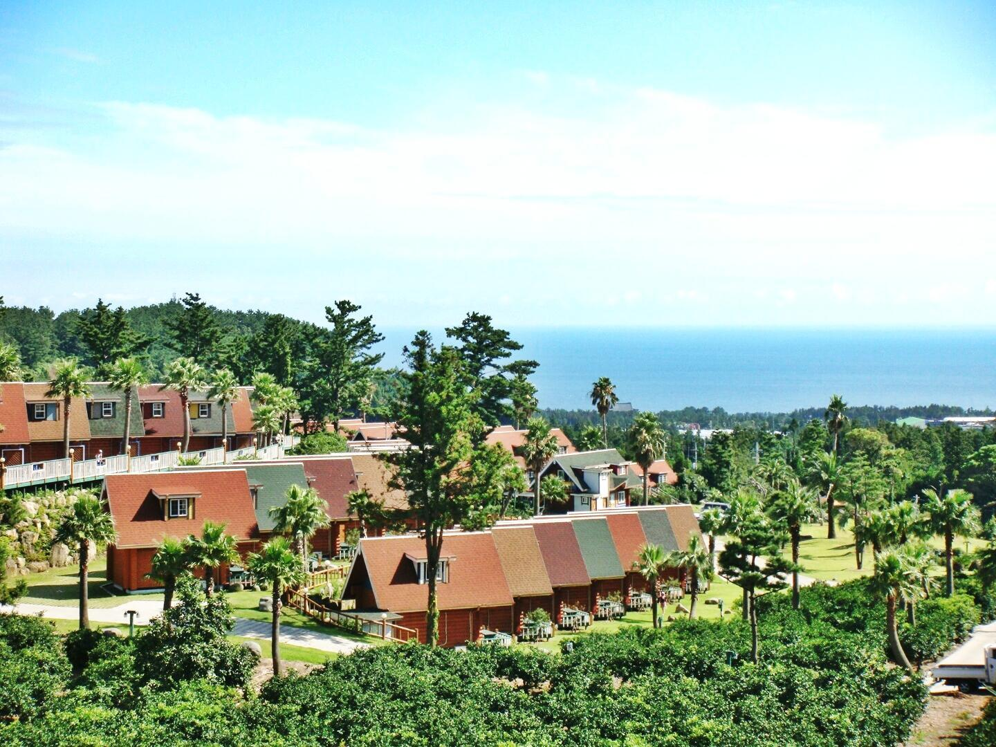 Jungmun Log Pension and Resort14
