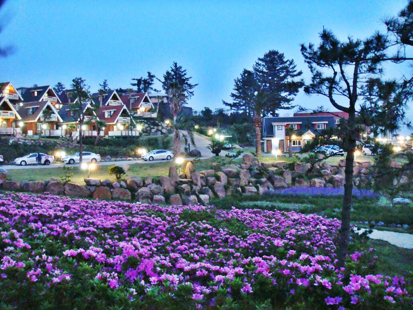 Jungmun Log Pension and Resort4