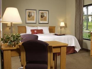 hotels.com Hampton Inn And Suites Airport