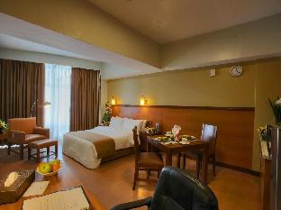 マラヤン プラザ ホテル3