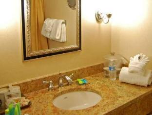 Radisson Lackawanna Station Hotel Scranton Scranton (PA) - Bathroom