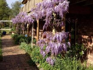 Wisteria Lodge Bed and Breakfast