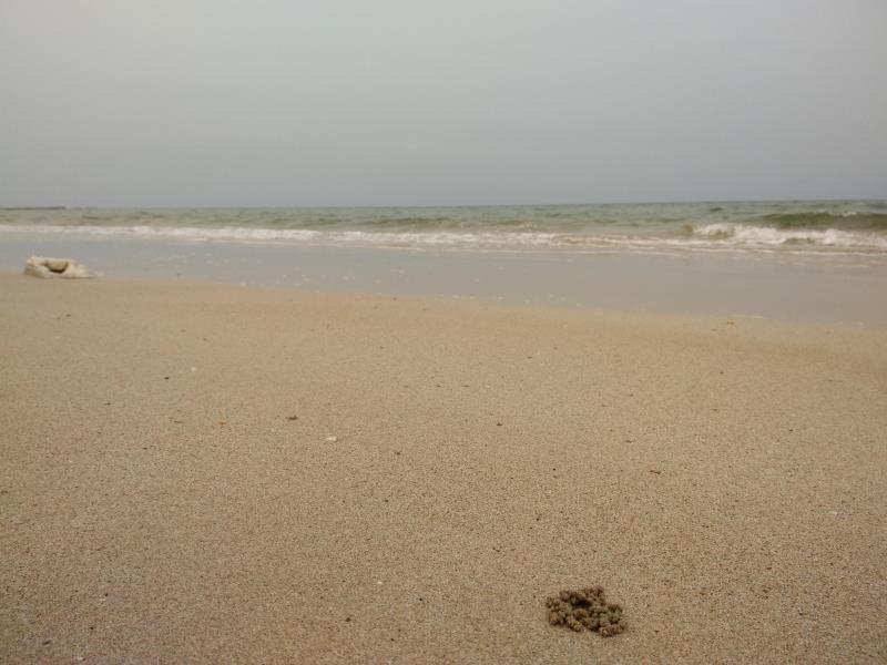 朝劳海滩沙垄度假村,แซนด์ ดูนส์ เจ้าหลาว บีช รีสอร์ท