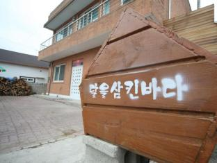 Dalsamba Guesthouse 1 - Gangneung-si