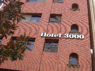 Akihabara Hotel 3000