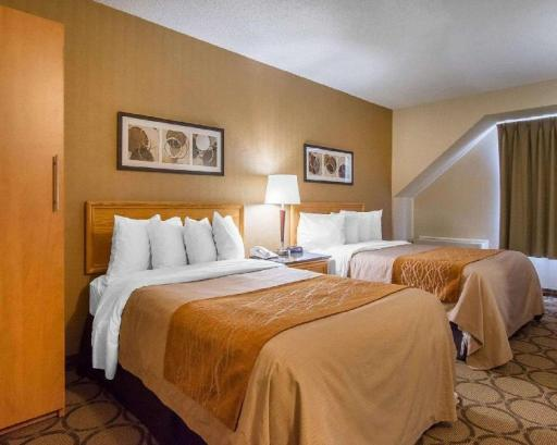 Best PayPal Hotel in ➦ Baie-Comeau (QC):