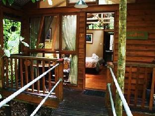 Daintree Wilderness Lodge3