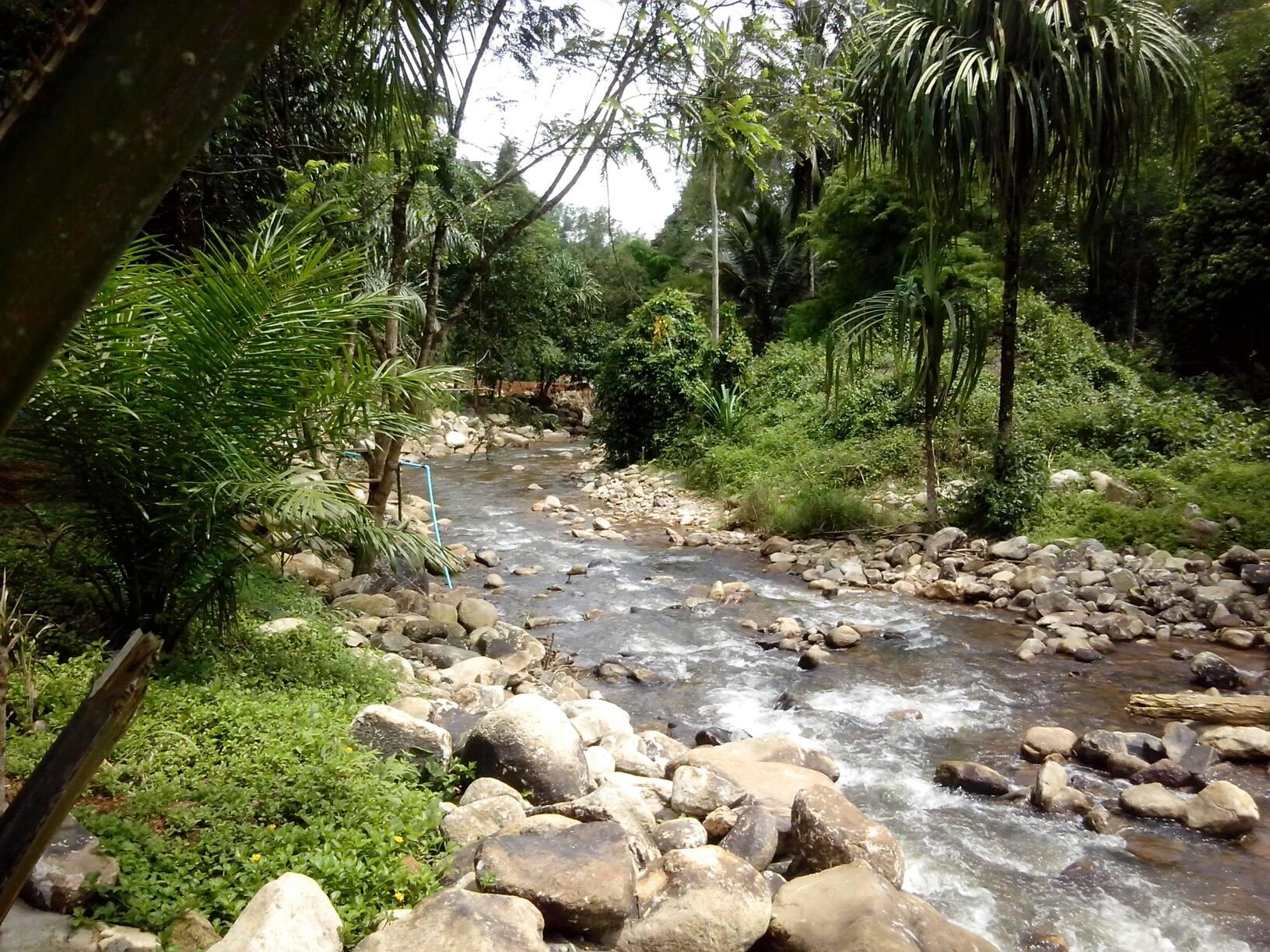 Bangnu River Resort,บางนู ริเวอร์ โฮมสเตย์