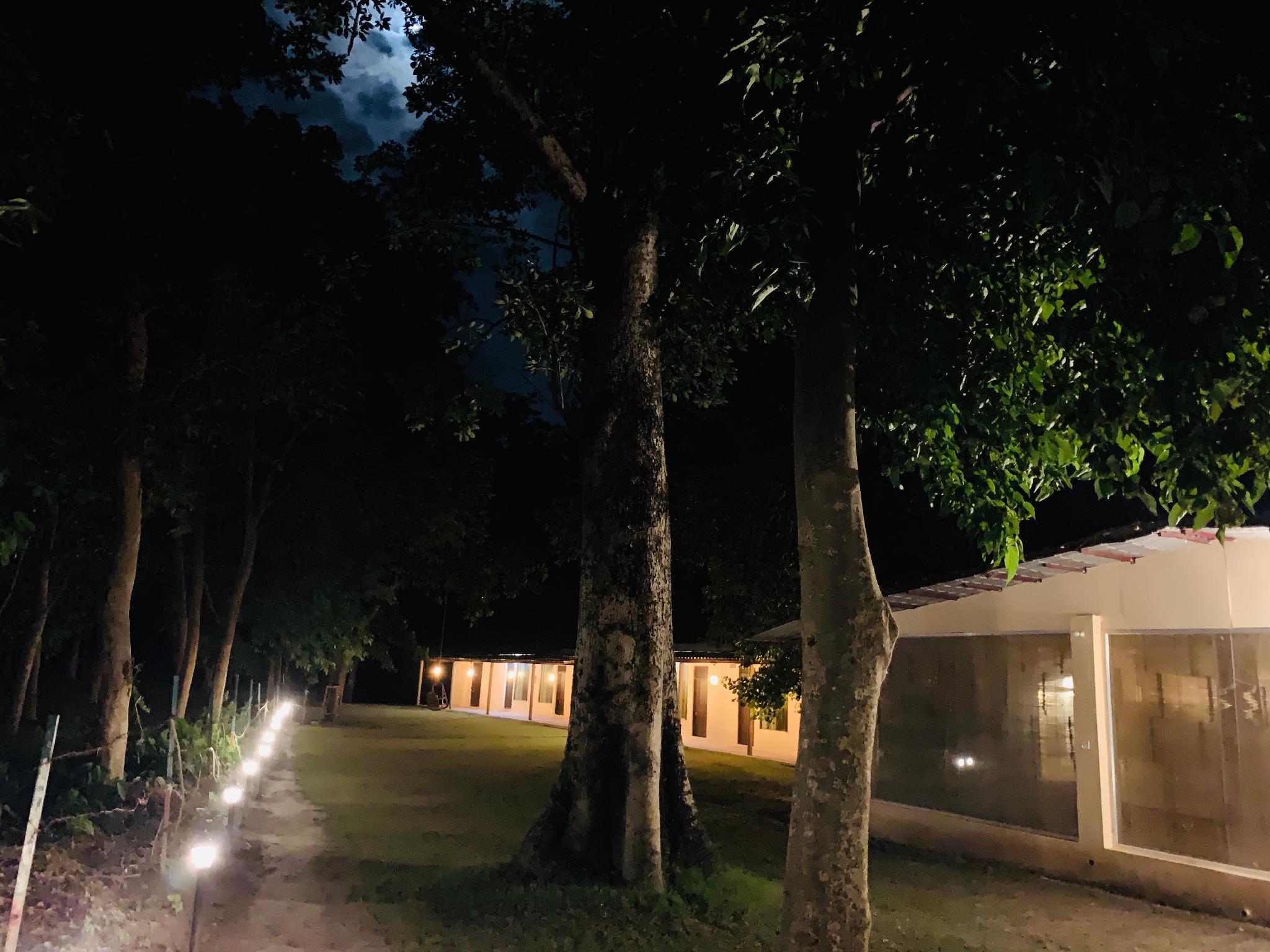 Ganga Yog Retreat By Yog Gurukul