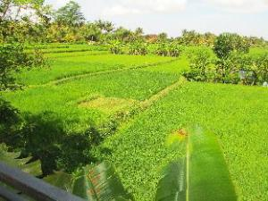 Panorama Ubud Private Villa