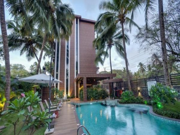 Cygnett Lite Celestiial Goa Goa
