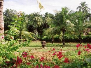 picture 4 of Pulchra Resort