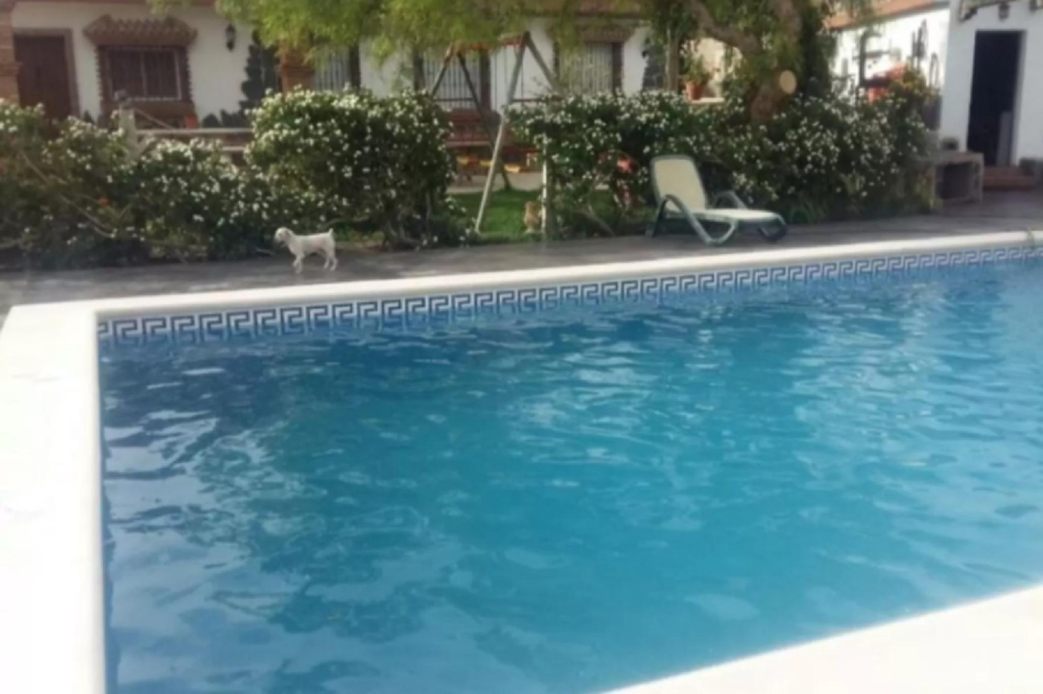 103603   House In Medina Sidonia