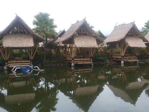 Baturiti Villa Lovina Bali