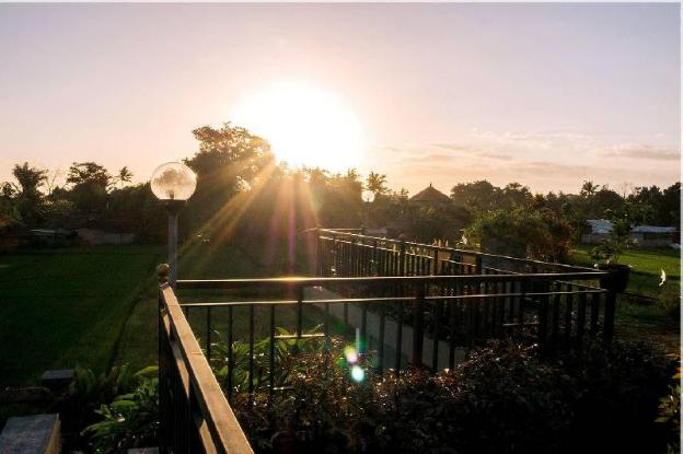 Ricefield Villa  2BR  Near ubud with Private pool