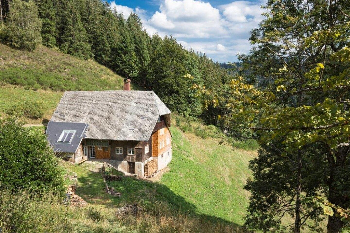 Kaspershausle Apartment In The Black Forest