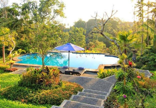 Beautiful Gardens front the Terrace + Breakfast