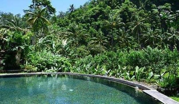 1BR Private Pool + Breakfast - Ubud