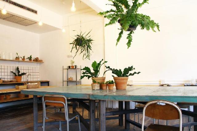 กรีน สลีป โฮสเทล – Green Sleep Hostel