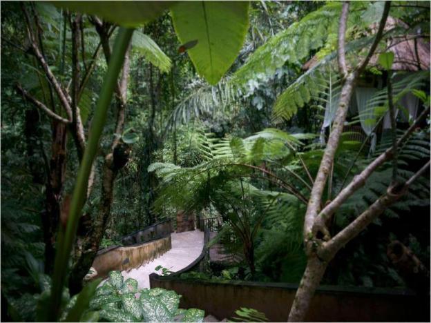 3 BR Villa W/ Back to Nature View - Breakfast