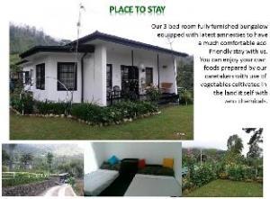 Royal Eco Resort