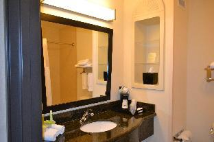 Фото отеля Holiday Inn Express Hotel and Suites - Odessa