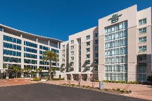 希爾頓惠庭套房酒店 - 坦帕機場西岸
