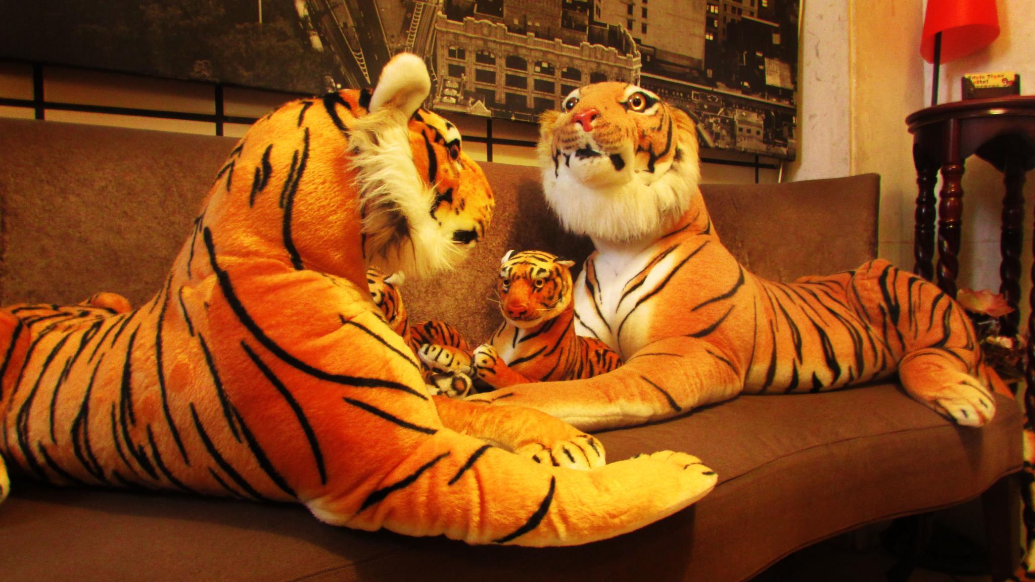 Triple Tiger Hostel
