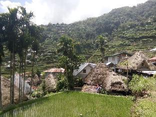 picture 1 of Batad village homestay