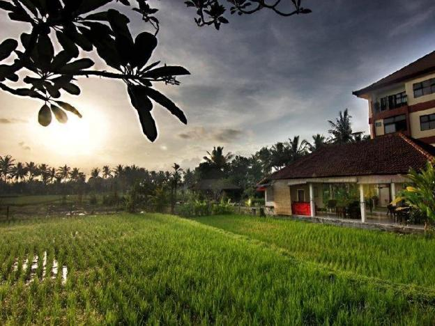 Suly Vegetarian Resort and Spa