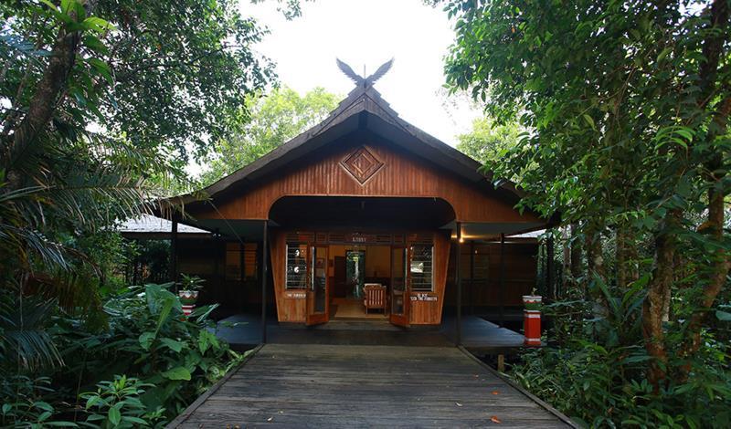 Rimba Orangutan Eco Lodge