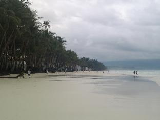 picture 5 of Amigos Beach Resort