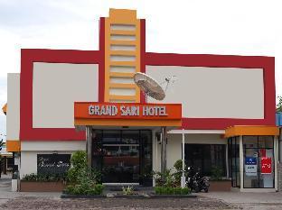 莎莉大酒店