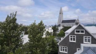 Reykjavik City Center spacious penthouse - Reykjavik
