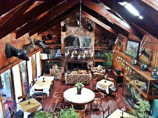 picture 3 of Safari Lodge Baguio by Log Cabin Hotel