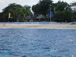 picture 1 of Balicasag Island Dive Resort