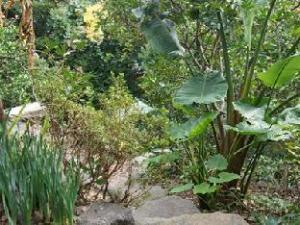 Gardenvilla Shirahama Resort Hotel