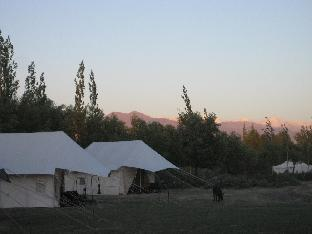 Фото отеля Tsermang Eco Camp