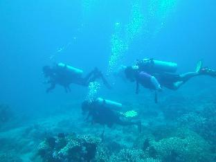 picture 5 of Leyte Dive Resort
