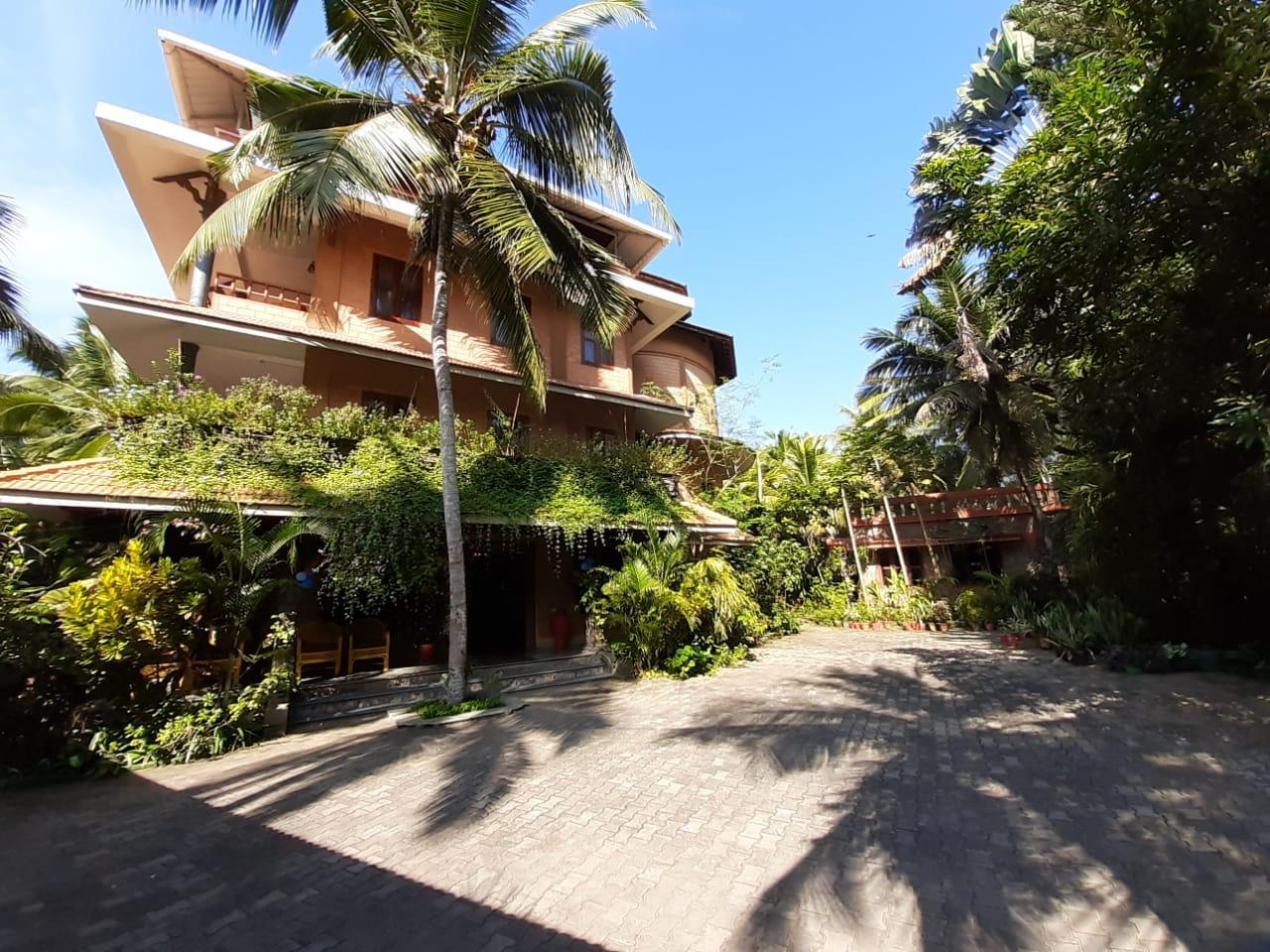 Wild Palms On Sea Hotel