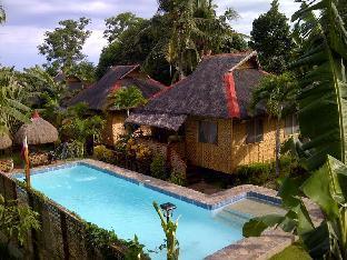 picture 1 of Island Tiki Paradise Resort