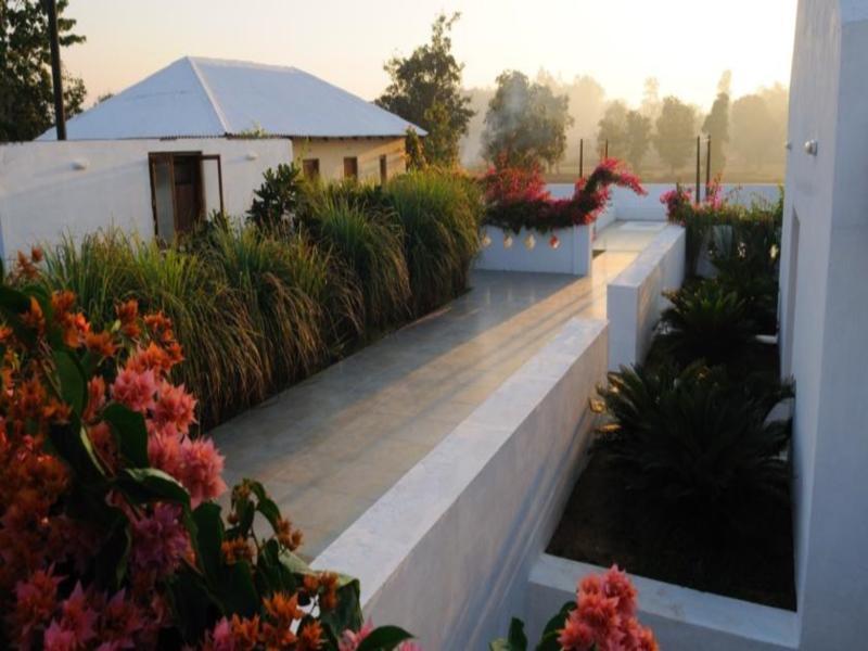 Bagh Tola Hotel