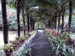 Rai Sai Luang Resort