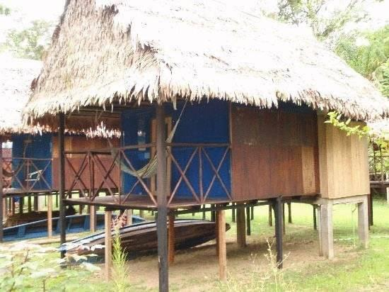 Amazon Muyuna Lodge   All Inclusive