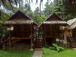 ジャングル ガーデン Jungle Garden