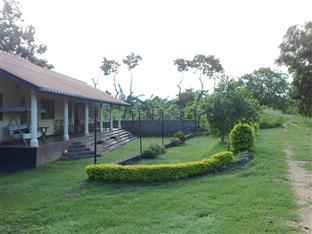 Bungalow At 84