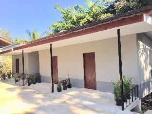 Palm House 3